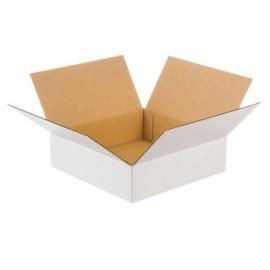 Hvid papkasse 450x350x80 mm